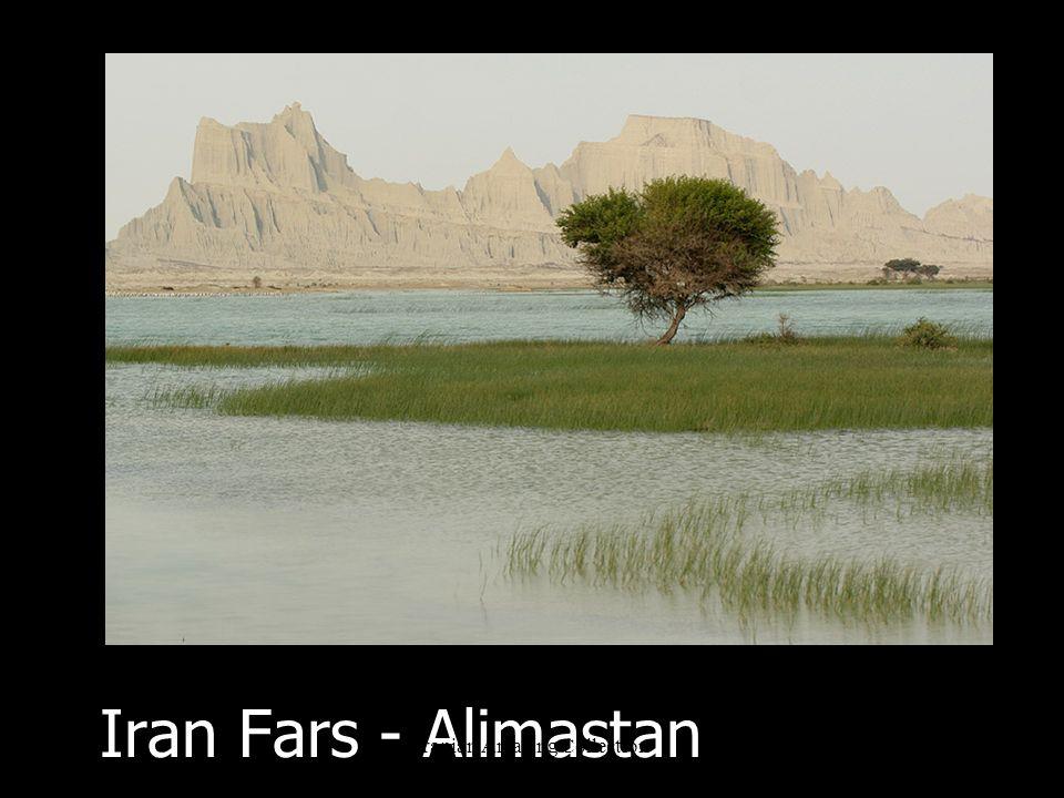 Iran Yazd Iranian Amazing Collection
