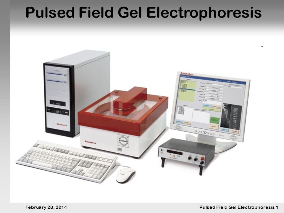 28. Februar 2014 Pulsfeldgelelektrophorese.1 February 28, 2014 Pulsed Field Gel Electrophoresis 1 Pulsed Field Gel Electrophoresis