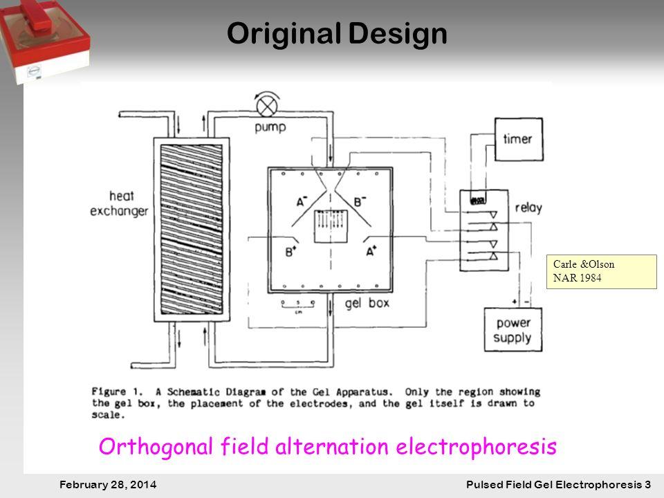 28. Februar 2014 Pulsfeldgelelektrophorese.3 February 28, 2014 Pulsed Field Gel Electrophoresis 3 Original Design Orthogonal field alternation electro