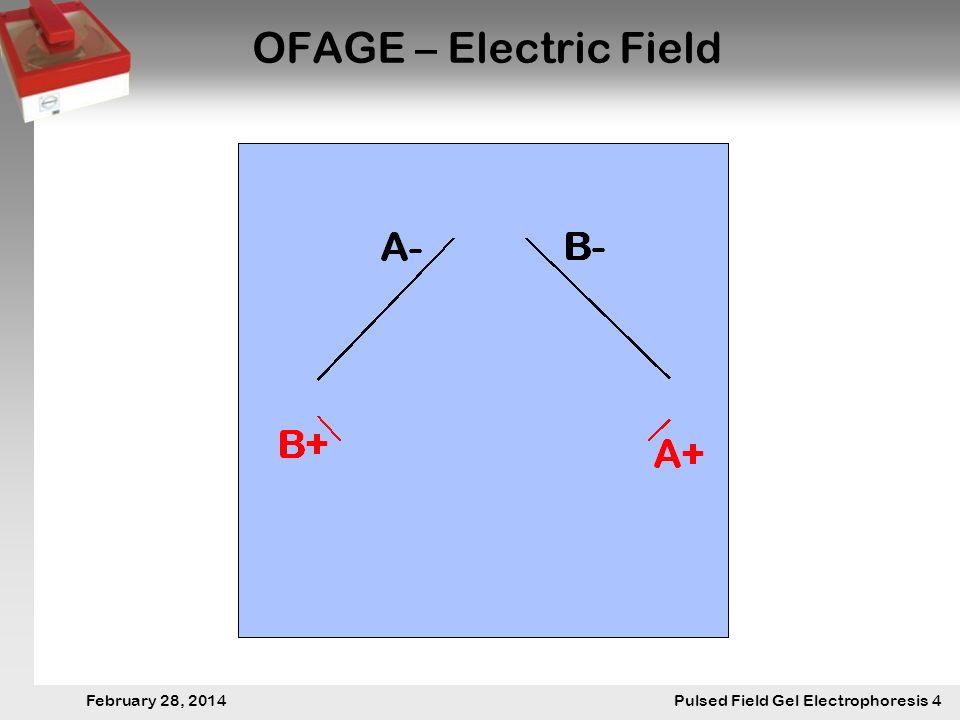 28. Februar 2014 Pulsfeldgelelektrophorese.4 February 28, 2014 Pulsed Field Gel Electrophoresis 4 OFAGE – Electric Field