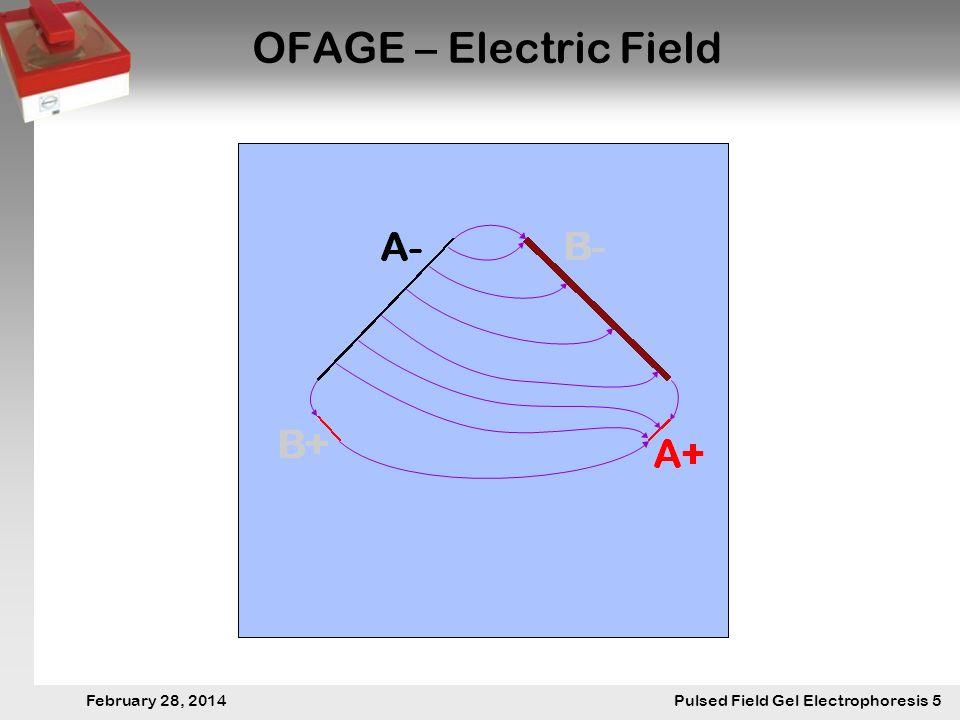 28. Februar 2014 Pulsfeldgelelektrophorese.5 February 28, 2014 Pulsed Field Gel Electrophoresis 5 OFAGE – Electric Field