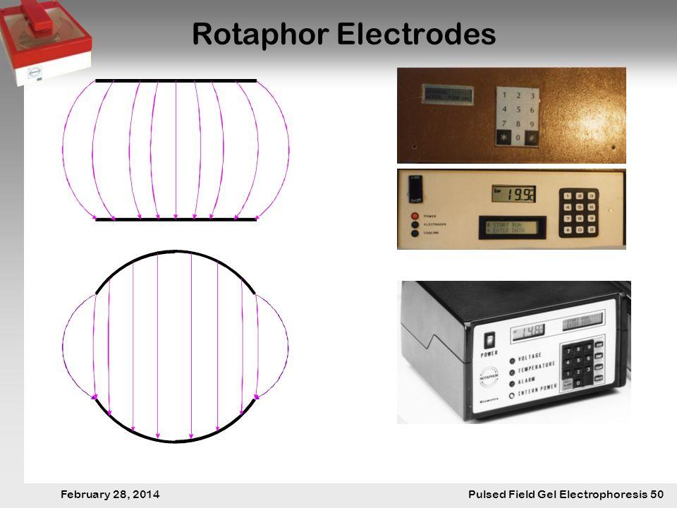 28. Februar 2014 Pulsfeldgelelektrophorese.50 February 28, 2014 Pulsed Field Gel Electrophoresis 50 Rotaphor Electrodes