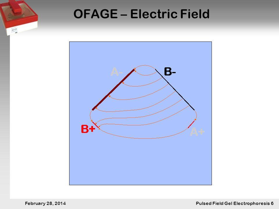 28. Februar 2014 Pulsfeldgelelektrophorese.6 February 28, 2014 Pulsed Field Gel Electrophoresis 6 OFAGE – Electric Field