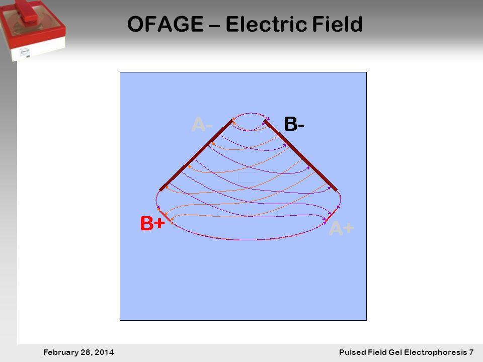 28. Februar 2014 Pulsfeldgelelektrophorese.7 February 28, 2014 Pulsed Field Gel Electrophoresis 7 OFAGE – Electric Field