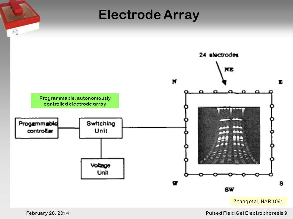 28. Februar 2014 Pulsfeldgelelektrophorese.9 February 28, 2014 Pulsed Field Gel Electrophoresis 9 Electrode Array Zhang et al, NAR 1991 Programmable,