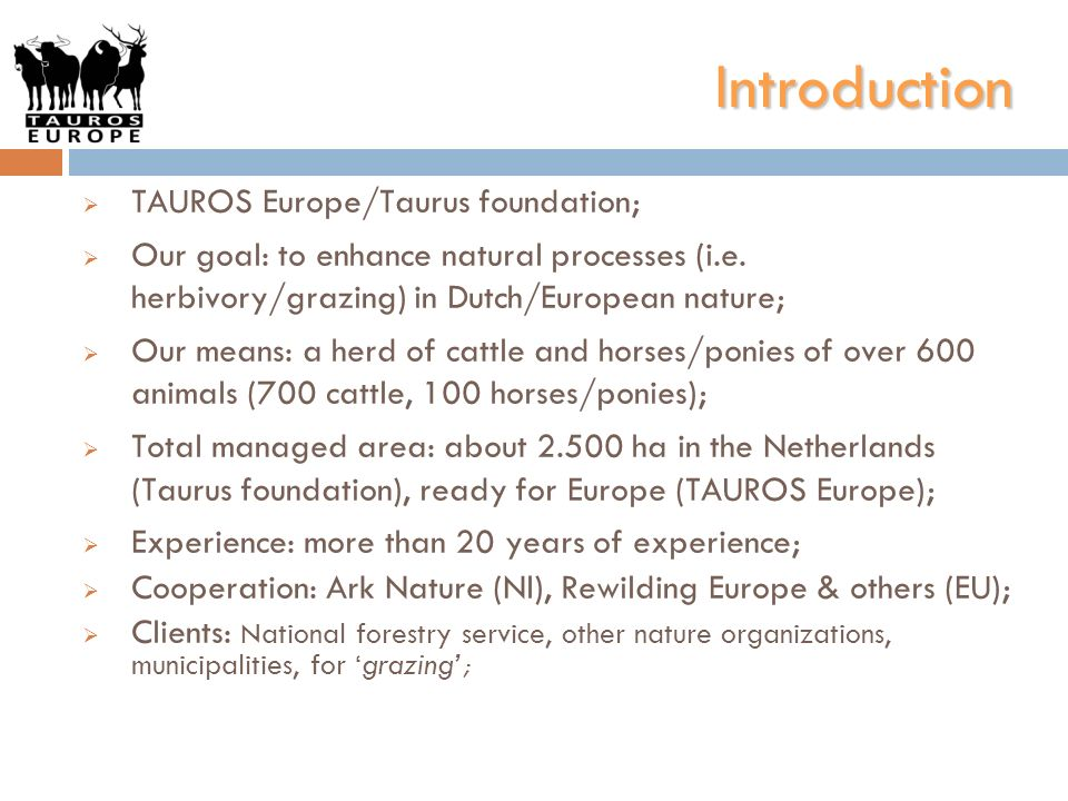 Introduction TAUROS Europe/Taurus foundation; Our goal: to enhance natural processes (i.e. herbivory/grazing) in Dutch/European nature; Our means: a h