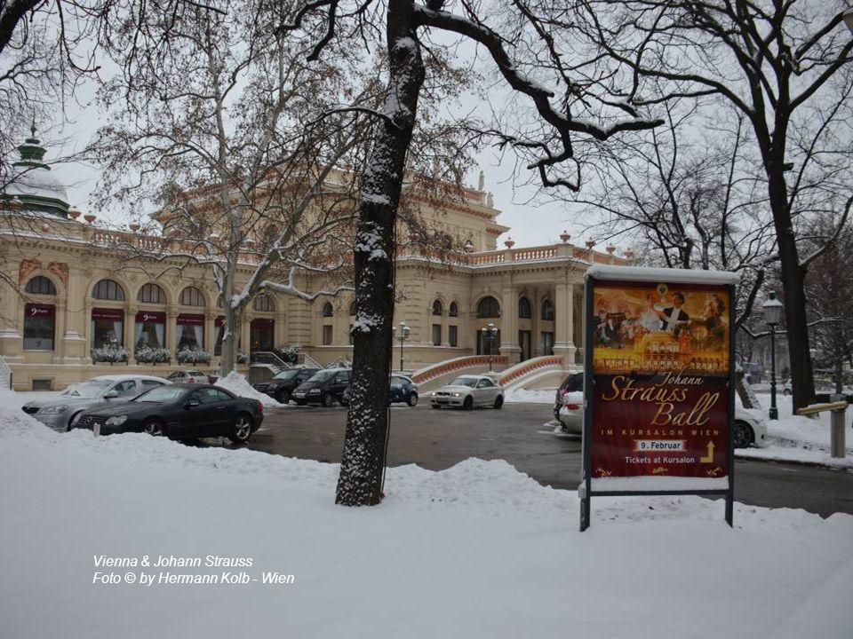 Vienna & Johann Strauss Foto © by Hermann Kolb - Wien