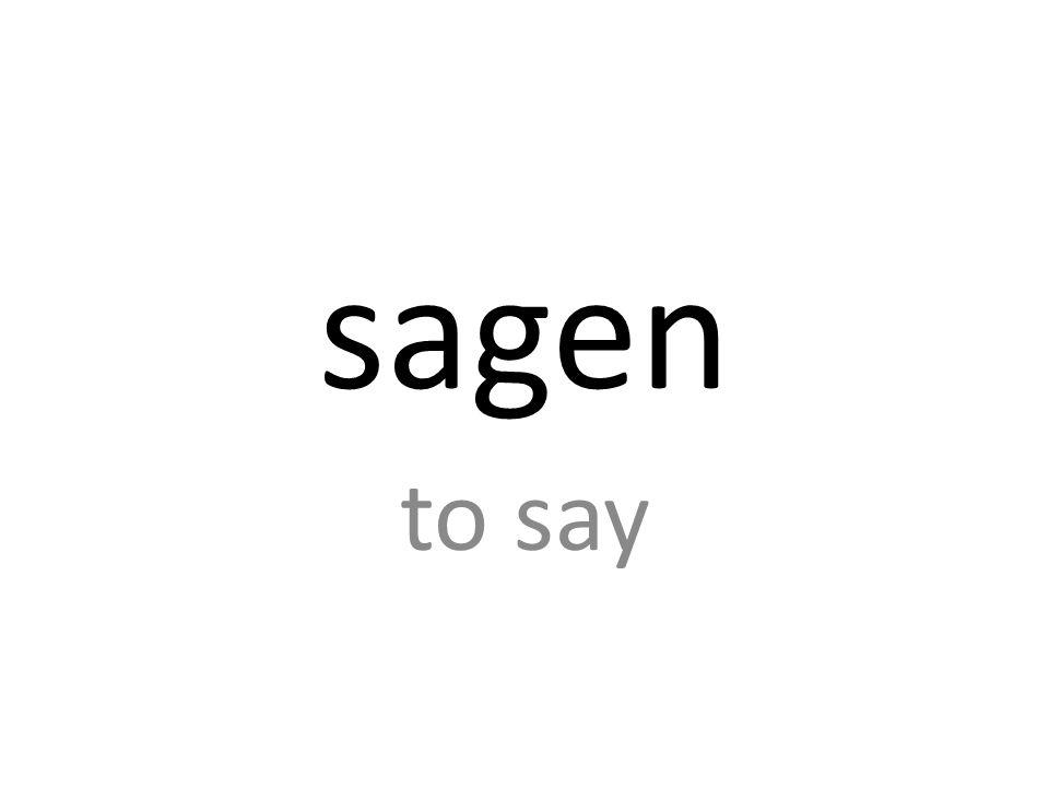 sagen to say