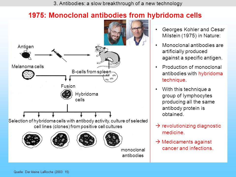 1975: Monoclonal antibodies from hybridoma cells Quelle: Der kleine LaRoche (2003: 15) Georges Kohler and Cesar Milstein (1975) in Nature: Monoclonal antibodies are artificially produced against a specific antigen.