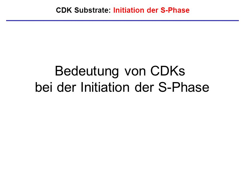 CDK Substrate: Initiation der S-Phase Bedeutung von CDKs bei der Initiation der S-Phase