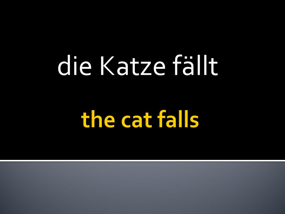 die Katze fällt