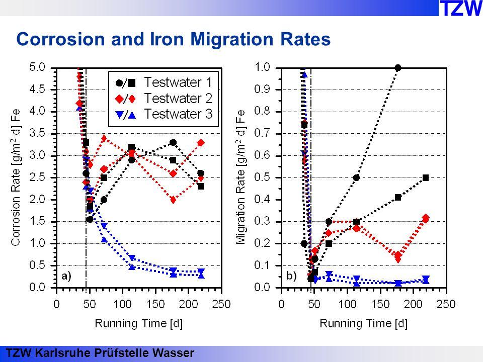 TZW Karlsruhe Prüfstelle Wasser Corrosion and Iron Migration Rates