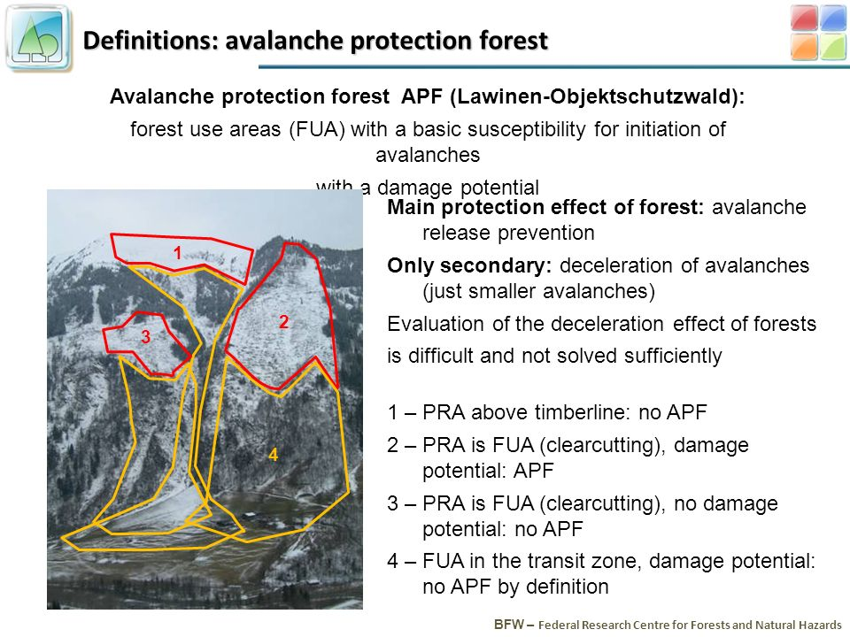 Definitions: avalanche protection forest BFW – Federal Research Centre for Forests and Natural Hazards Avalanche protection forest APF (Lawinen-Objektschutzwald): forest use areas (FUA) with a basic susceptibility for initiation of avalanches with a damage potential Main protection effect of forest: avalanche release prevention Only secondary: deceleration of avalanches (just smaller avalanches) Evaluation of the deceleration effect of forests is difficult and not solved sufficiently 1 – PRA above timberline: no APF 2 – PRA is FUA (clearcutting), damage potential: APF 3 – PRA is FUA (clearcutting), no damage potential: no APF 4 – FUA in the transit zone, damage potential: no APF by definition 1 2 3 4