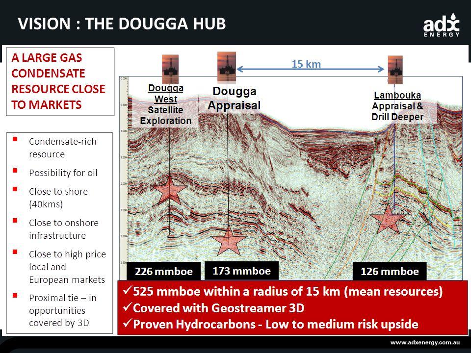 VISION : THE DOUGGA HUB