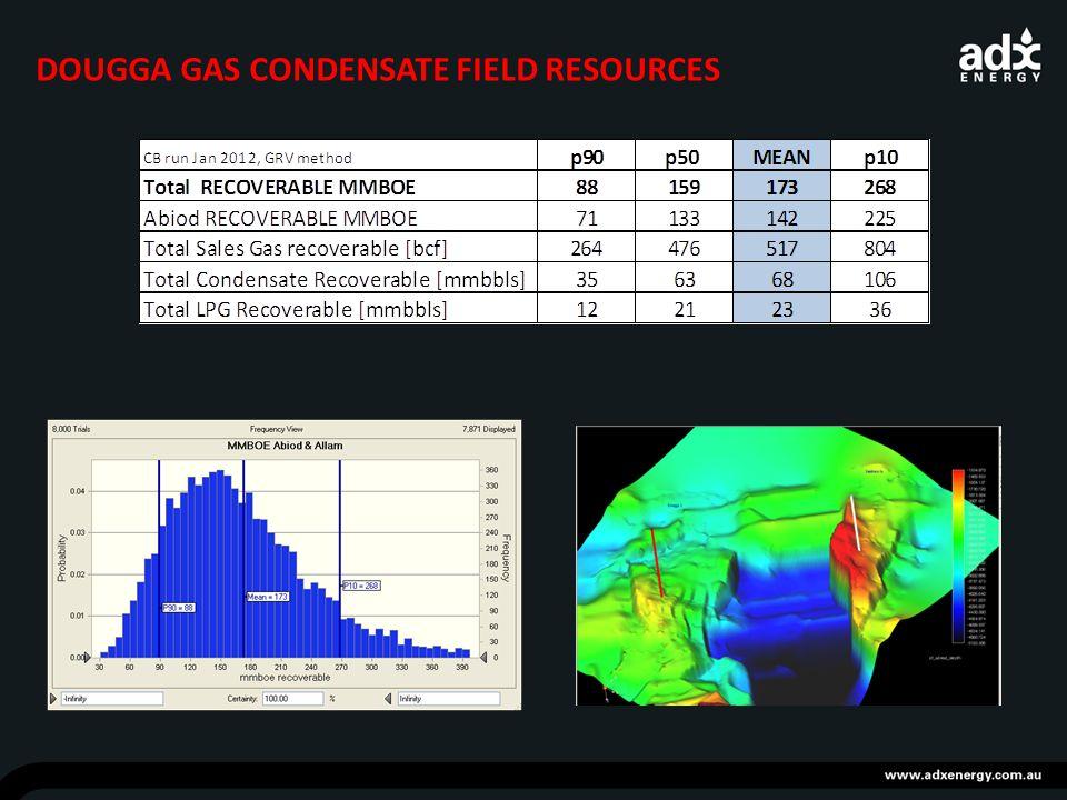 DOUGGA GAS CONDENSATE FIELD RESOURCES