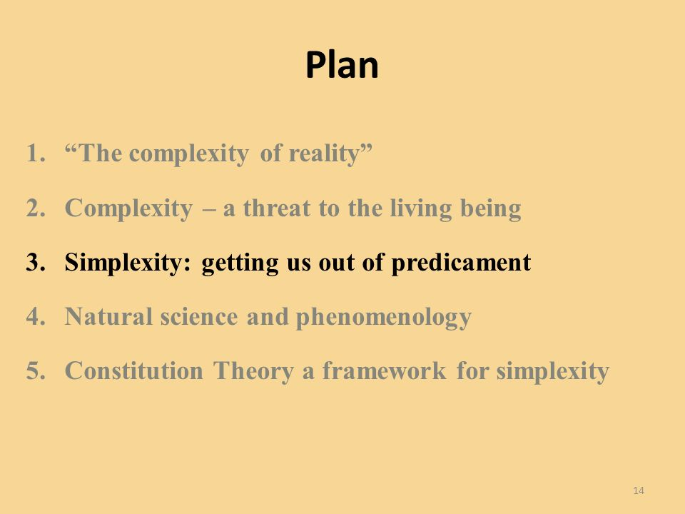 Plan 1.The complexity of reality 2.Complexity – a threat to the living being 3.Simplexity: getting us out of predicament 4.Natural science and phenomenology 5.Constitution Theory a framework for simplexity 14