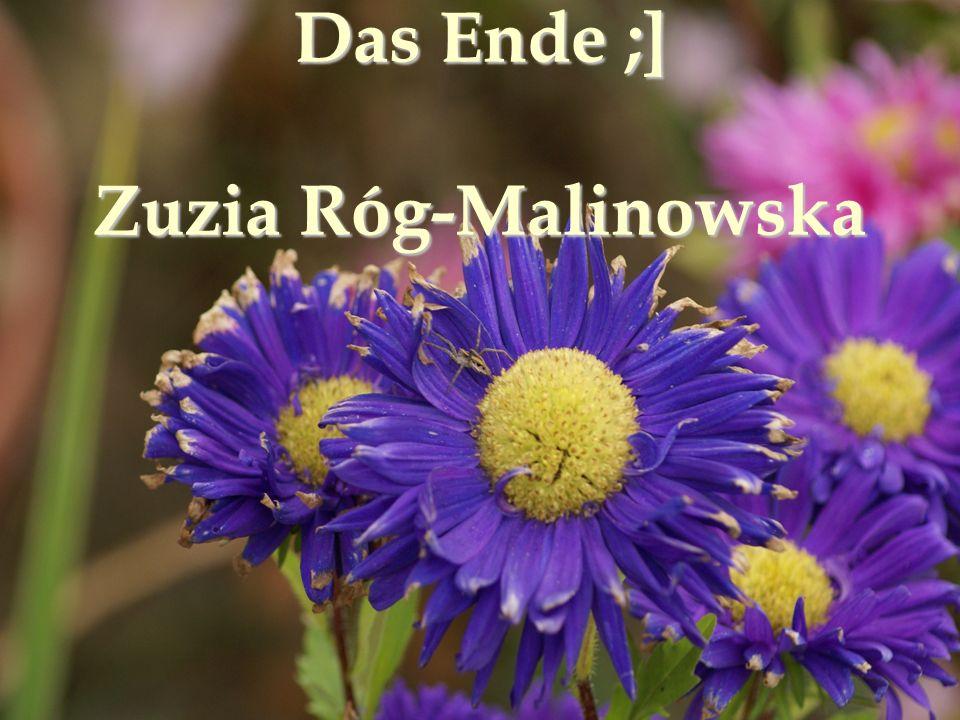 Das Ende ;] Zuzia Róg-Malinowska