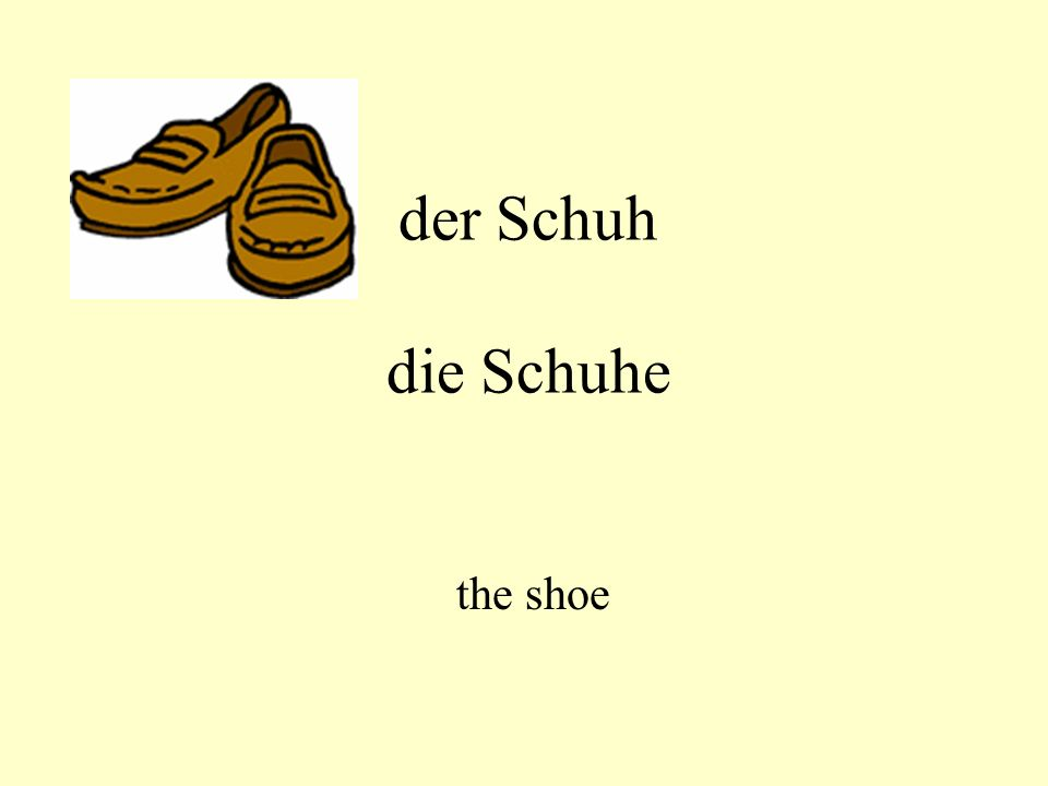 der Schuh die Schuhe the shoe