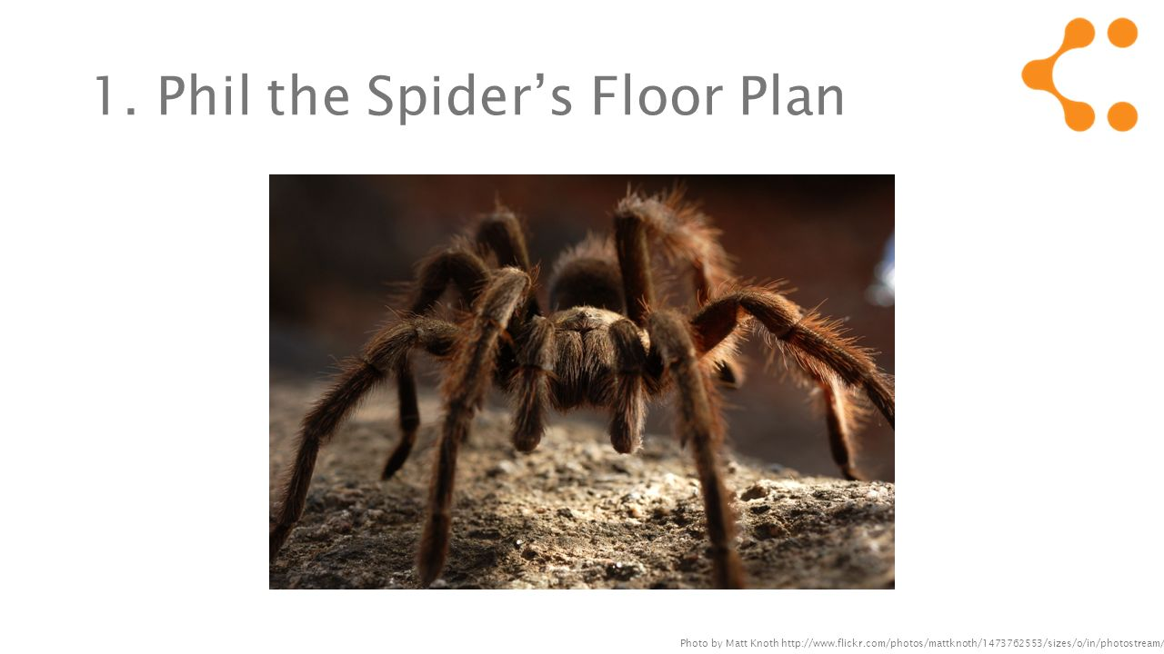 1. Phil the Spiders Floor Plan Photo by Matt Knoth http://www.flickr.com/photos/mattknoth/1473762553/sizes/o/in/photostream/
