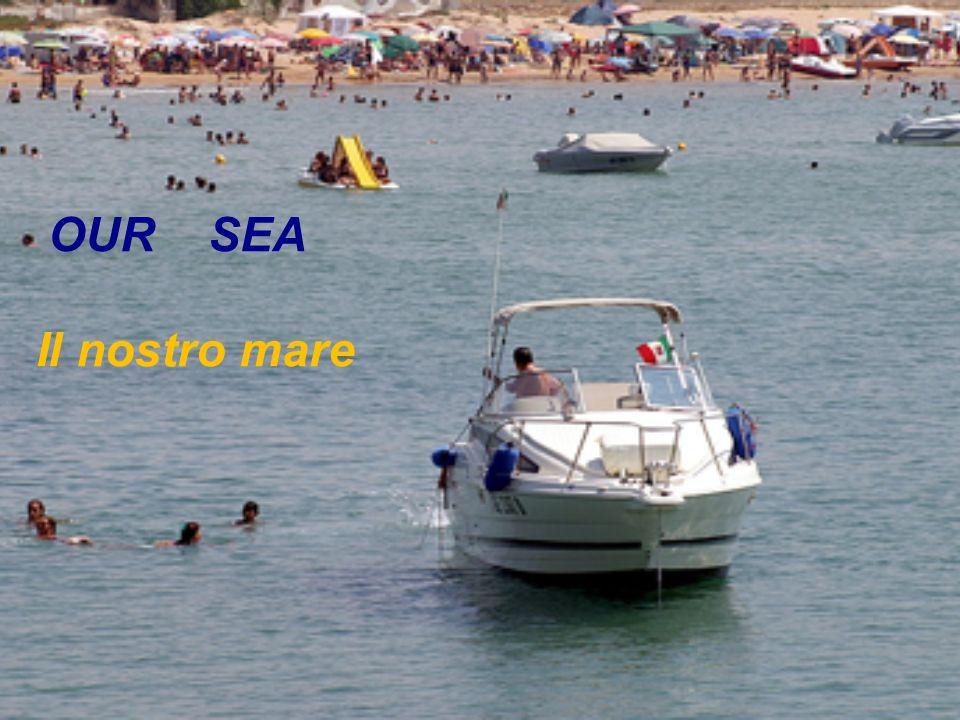 OUR SEA Il nostro mare
