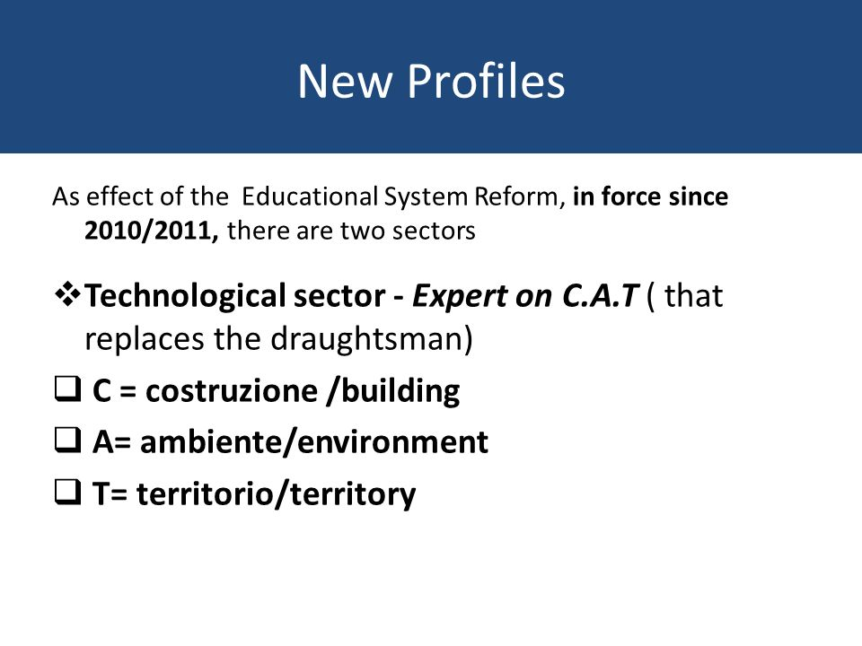 New Profiles As effect of the Educational System Reform, in force since 2010/2011, there are two sectors Technological sector - Expert on C.A.T ( that replaces the draughtsman) C = costruzione /building A= ambiente/environment T= territorio/territory