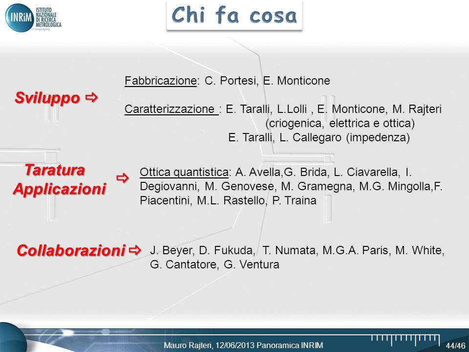 Mauro Rajteri, 12/06/2013 Panoramica INRIM 44/46 Fabbricazione: C. Portesi, E. Monticone Caratterizzazione : E. Taralli, L.Lolli, E. Monticone, M. Raj