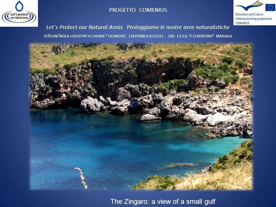 PROGETTO COMENIUS Let´s Protect our Natural Areas Proteggiamo le nostre aree naturalistiche STŘEDNÍ ŠKOLA LOGISTIKY A CHEMIE OLOMOUC ( REPUBBLICA CECA ) IISS - I.T.I.S.
