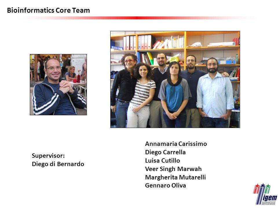 Bioinformatics Core Team Annamaria Carissimo Diego Carrella Luisa Cutillo Veer Singh Marwah Margherita Mutarelli Gennaro Oliva Supervisor: Diego di Be