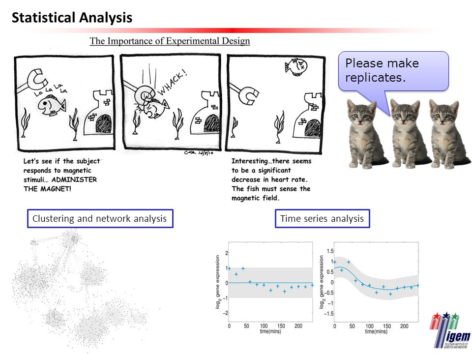 Statistical Analysis Clustering and network analysisTime series analysis Please make replicates.