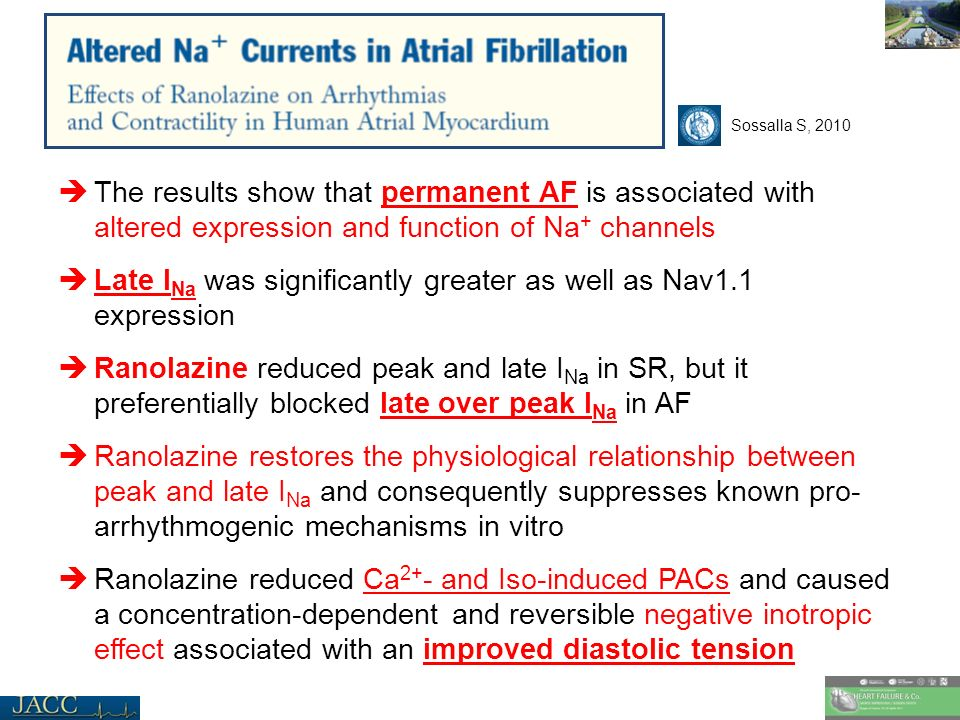 The results show that permanent AF is associated with altered expression and function of Na + channels Late I Na was significantly greater as well as Nav1.1 expression Ranolazine reduced peak and late I Na in SR, but it preferentially blocked late over peak I Na in AF Ranolazine restores the physiological relationship between peak and late I Na and consequently suppresses known pro- arrhythmogenic mechanisms in vitro Ranolazine reduced Ca 2+ - and Iso-induced PACs and caused a concentration-dependent and reversible negative inotropic effect associated with an improved diastolic tension Sossalla S, 2010