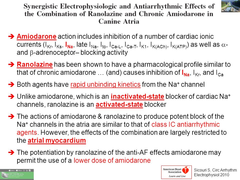 Amiodarone action includes inhibition of a number of cardiac ionic currents (I Kr, I Ks, I Na, late I Na, I to, I Ca-L, I Ca-T, I K1, I K(ACh), I K(ATP) ) as well as - and -adrenoceptor– blocking activity Ranolazine has been shown to have a pharmacological profile similar to that of chronic amiodarone … (and) causes inhibition of I Na, I Kr, and I Ca Both agents have rapid unbinding kinetics from the Na + channel Unlike amiodarone, which is an inactivated-state blocker of cardiac Na + channels, ranolazine is an activated-state blocker The actions of amiodarone & ranolazine to produce potent block of the Na + channels in the atria are similar to that of class IC antiarrhythmic agents.