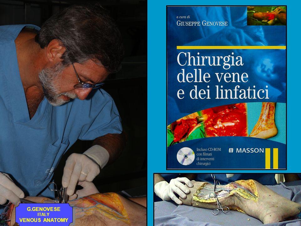 G.GENOVESE ITALY VENOUS ANATOMY G.GENOVESE ITALY VENOUS ANATOMY