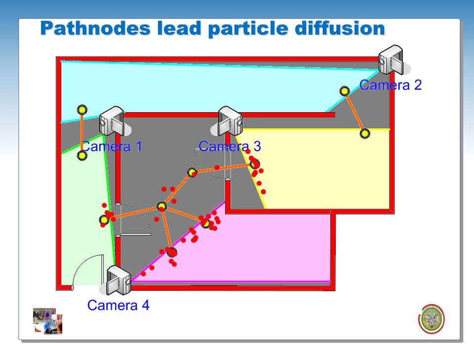 Roberto Vezzani - Imagelab – Università di Modena e Reggio Emilia Pathnodes lead particle diffusion