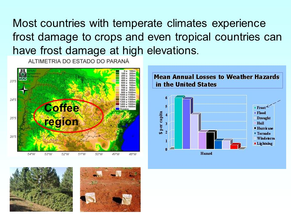 Most countries with temperate climates experience frost damage to crops and even tropical countries can have frost damage at high elevations.