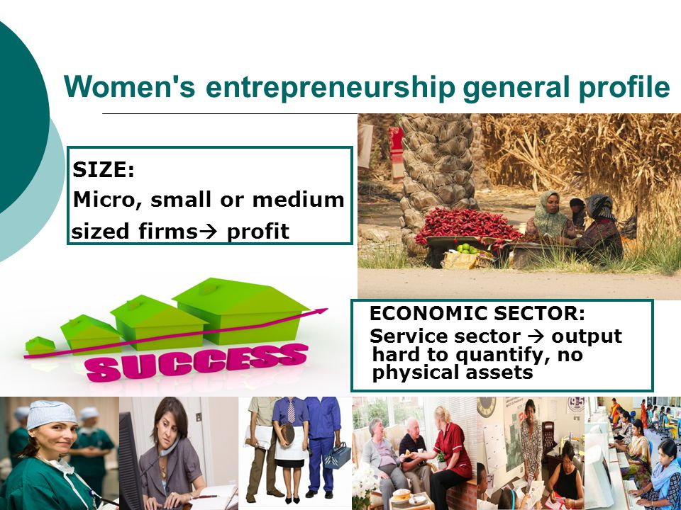 Women s entrepreneurship general profile ECONOMIC SECTOR: Service sector  output hard to quantify, no physical assets SIZE: Micro, small or medium sized firms  profit