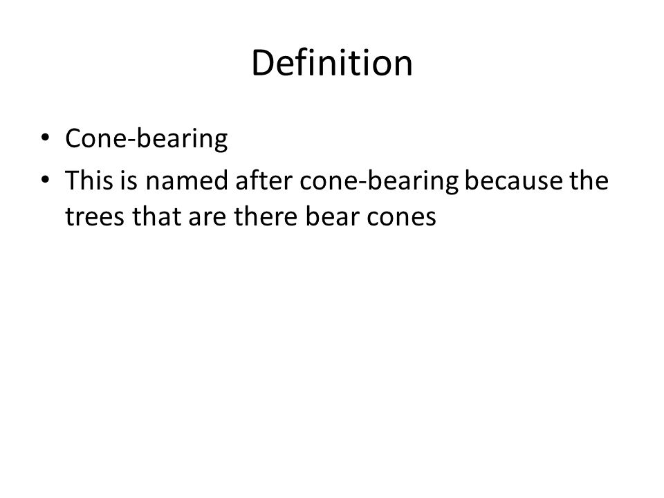 Definition Cone-bearing This is named after cone-bearing because the trees that are there bear cones