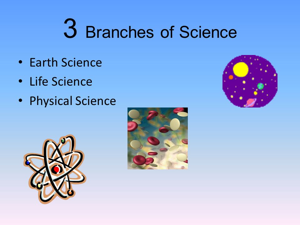 3 Branches of Science Earth Science Life Science Physical Science