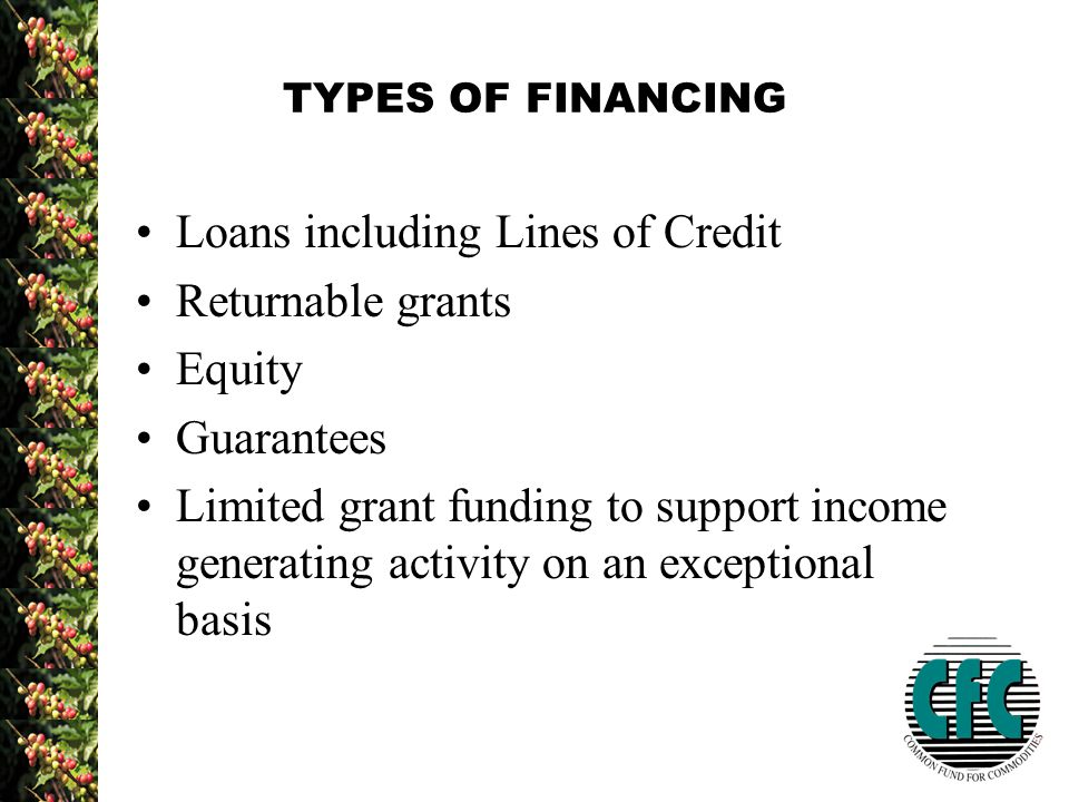 TYPES OF FINANCING Loans including Lines of Credit Returnable grants Equity Guarantees Limited grant funding to support income generating activity on an exceptional basis