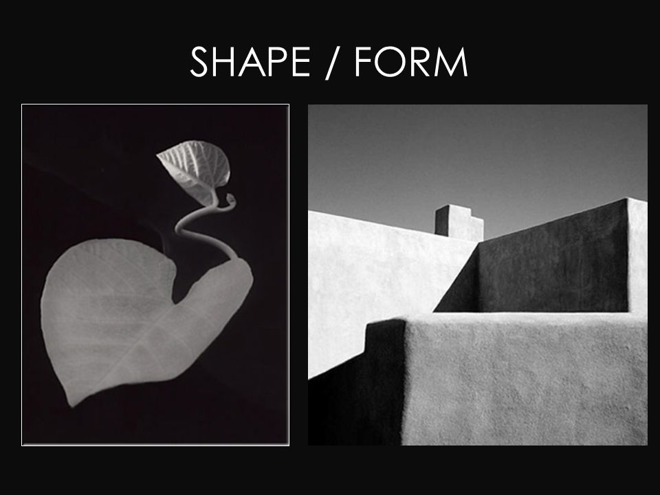 Shape And Form In Design : Photography composition using the elements and principles of