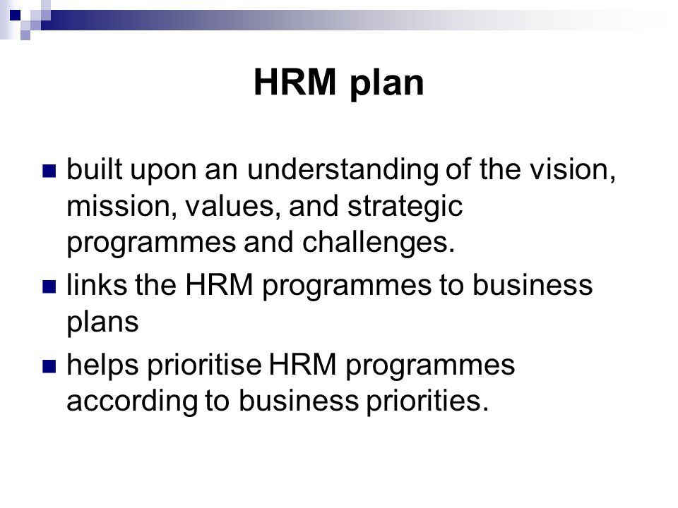 HRM plan built upon an understanding of the vision, mission, values, and strategic programmes and challenges.
