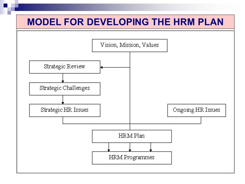 MODEL FOR DEVELOPING THE HRM PLAN