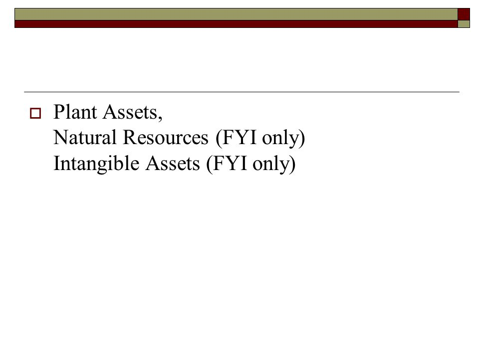 Plant Assets, Natural Resources (FYI only) Intangible Assets (FYI only)