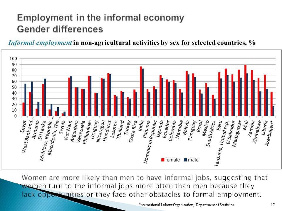 17 Informal employment in non-agricultural activities by sex for selected countries, %