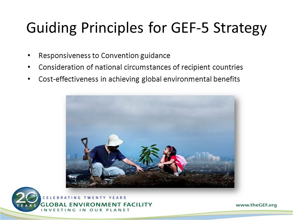 Guiding Principles for GEF-5 Strategy Responsiveness to Convention guidance Consideration of national circumstances of recipient countries Cost-effectiveness in achieving global environmental benefits