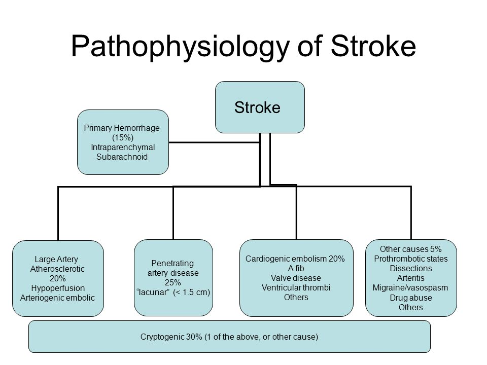 Medications for Secondary Prevention of Ischemic Stroke Alison ...
