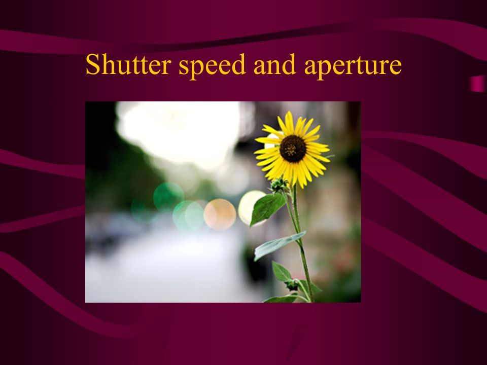 Shutter speed and aperture