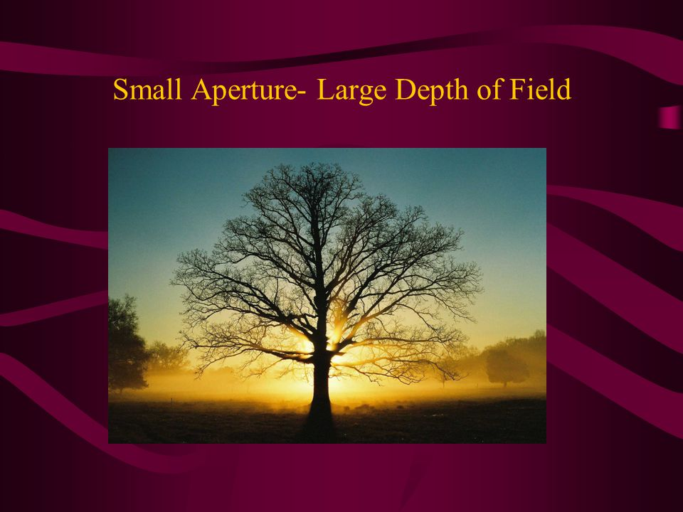 Small Aperture- Large Depth of Field