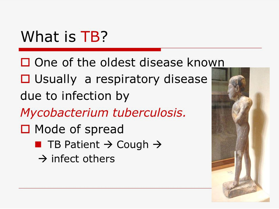 2 What is TB.