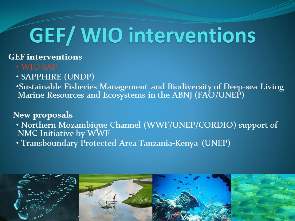 GEF/ WIO interventions GEF interventions WIO SAP SAPPHIRE (UNDP) Sustainable Fisheries Management and Biodiversity of Deep-sea Living Marine Resources and Ecosystems in the ABNJ (FAO/UNEP) New proposals Northern Mozambique Channel (WWF/UNEP/CORDIO) support of NMC Initiative by WWF Transboundary Protected Area Tanzania-Kenya (UNEP)
