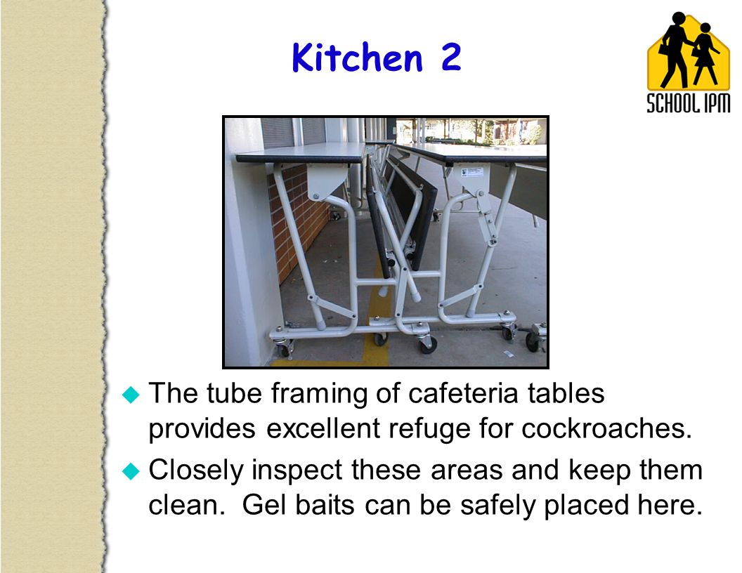 Clean cafeteria tables - U The Tube Framing Of Cafeteria Tables Provides Excellent Refuge For Cockroaches